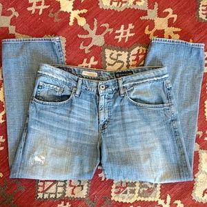 Adriano Goldschmied crop jeans